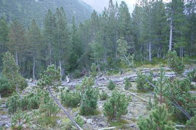 2016 nationalpark 056