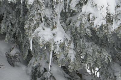 2017 wannak-pfle skitour 037