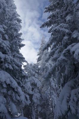 2017 wannak-pfle skitour 043